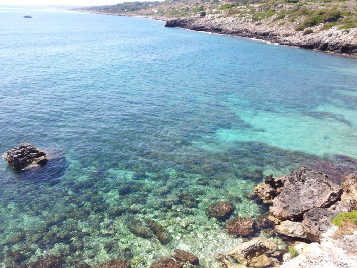 the beauty of San Gregorio rocky beach