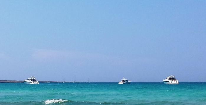 yachts1